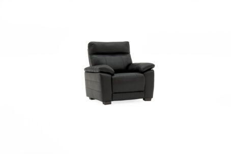 Carmine Fixed Leather Armchair - Black